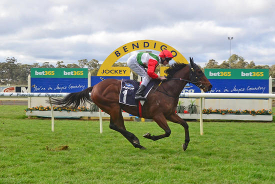 Acccelerato demolishes field at Bendigo for monster VOBIS maiden