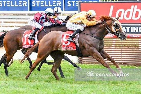 She's Positive lands Noonan in the winners stall again on Mornington Cup Day