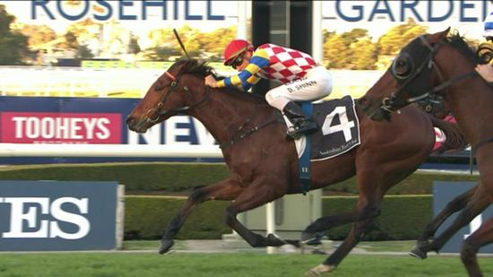 Manolo Blahniq rockets home for rampant win at Rosehill
