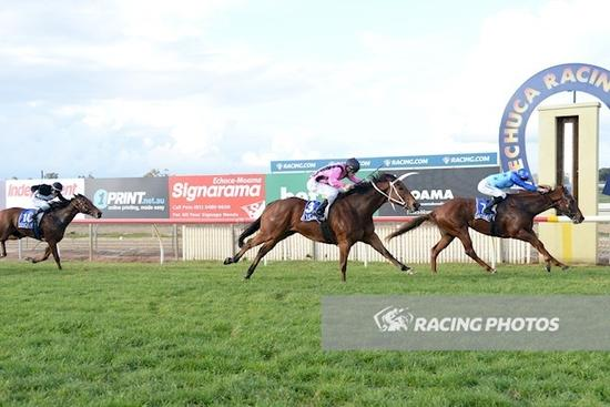 Elite Legacy back in the winners circle with big win at Echuca