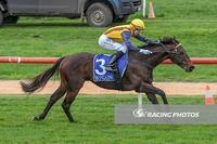 Chas Marlow back to winning ways with booming win at The Bool