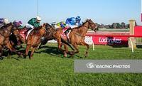 All heart! Elite Legacy toughs out gutsy win at Sale