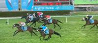 Noonan brings up a Dynamic Duo of back-to-back Gold Coast wins
