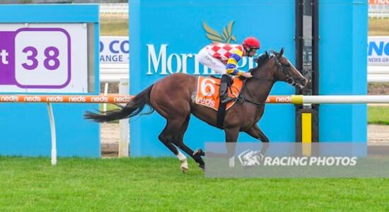 Raven Blazes turf at Mornington to kick of campaign with mighty win