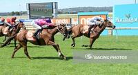 Marvelous Mornington rings true for Sanctuaire with strong win