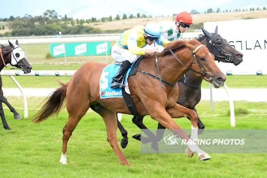 Like a shot out of a cannon, Our Free Spirit blows em' away at Yarra Valley
