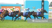 Florent returns a winner at Marvelous Mornington