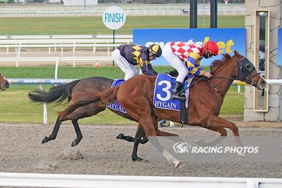 A stayer on the rise as Domfiore dominates at Pakenham