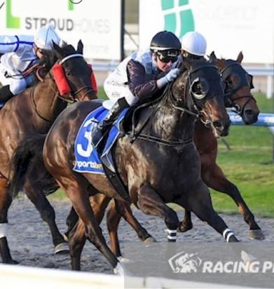 Impressive Saorsa wins at Pakenham