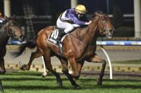 Gutsy Trevinder gets the money at Moonee Valley
