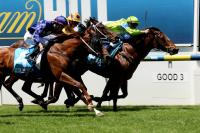 Baby Whistles to first-up win at Moonee Valley