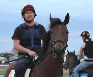 Trackwork with Tommy