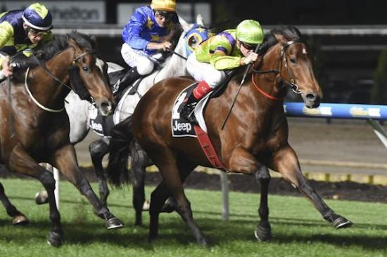 'Tubby' Rough Justice notches a first-up victory at Moonee Valley