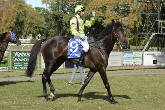 Lucques chasing two in a row at Ballarat