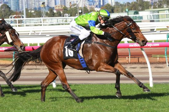 High expectations for Caulfield and Bendigo runners