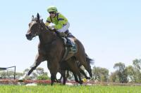Tempered makes it an Echuca treble for Ellerton Zahra