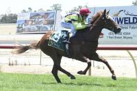 Light puts Echuca rivals to the Sword