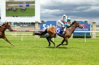 Magna Rossa classes above at Sale