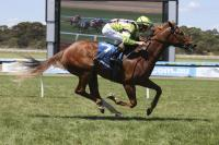 Siding springs to another win at Sandown