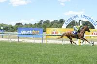 Pure speed gets Crystal Dreamer home at Kyneton