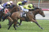 Rough Justice gets the money again at Flemington