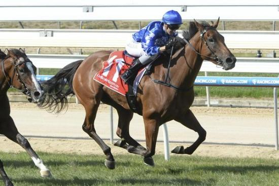Maneeki stars first-up at Mornington