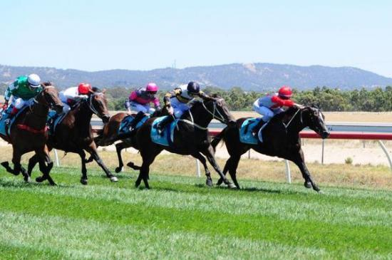 Ticket makes trip to Ararat worthwhile