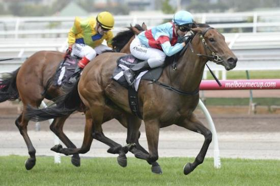 Magna Rossa makes it two in a row at Flemington