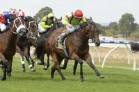 VOBIS Gold success for Rough Justice