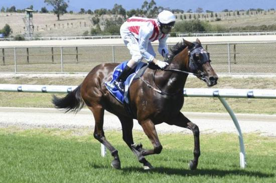 Blinkers help Triple Effort cruise to Yarra Valley victory