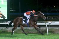 Night and day double for Ellerton Zahra Racing