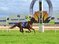 Class rise no worries for Dreamer at Swan Hill