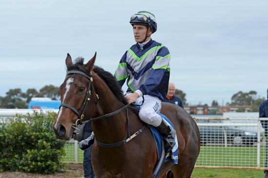 Double strike for Ellerton Zahra at Geelong