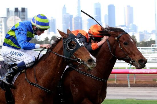 Pin Your Hopes does it tough in Flemington victory