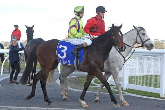 Gutsy Matty withstands pressure at Pakenham