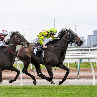 Glorious Flemington victory for Lucques