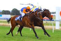 La Volt fights hard for Wodonga win