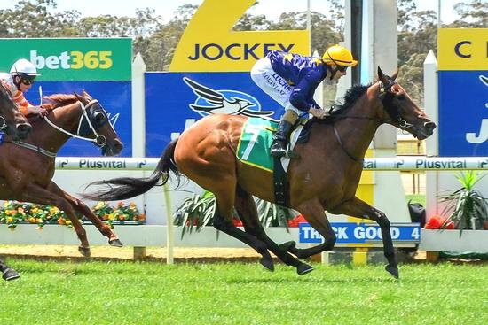 Lane helps filly Rock Bendigo