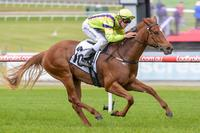Arctic Angel too quick in Merson Cooper Stakes