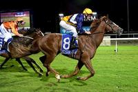 Pakenham track perfect for Sir Sagamore's charge