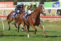 Perfect start for Crystal Dreamer at Werribee