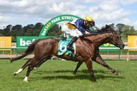 See Me Fly sprouts wings to score at Kyneton