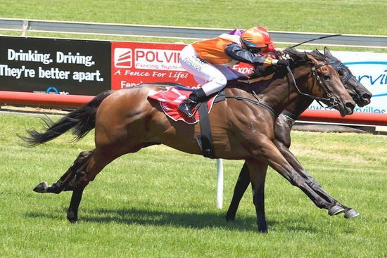 Schilleraine breaks through at Sale