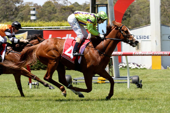 Ellerton Zahra Racing's hot run continues