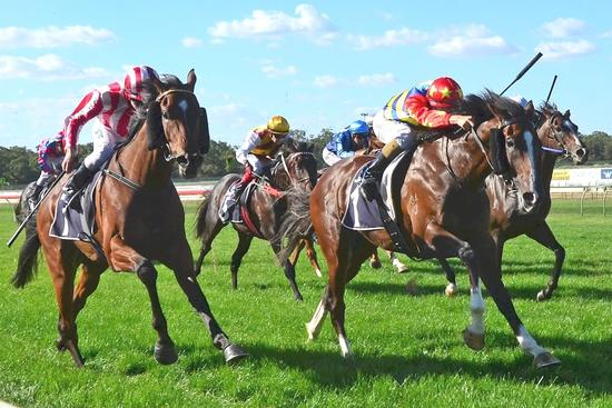 Powerful first-up win for Odeon at Bendigo