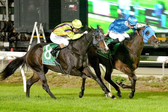 Blinkers do the trick for Biseau at Cranbourne