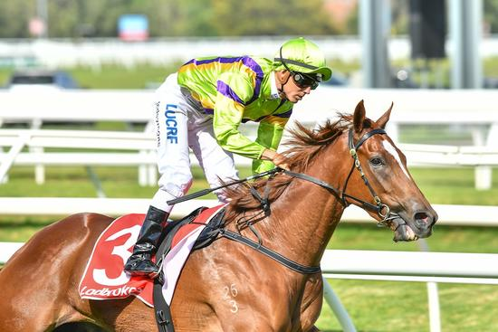 Oaks a possibility for Sword after Caulfield win