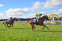 Special win for Crystal Kingdom at Bendigo