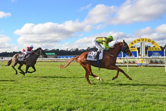 Special win for Crystal Kingdom at Bendigo