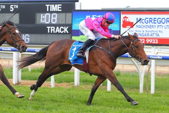 Casares headed but fights back for Wangaratta win
